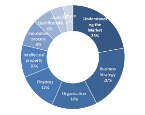 Rahoituksen saajat kaipaavat apua strategian ja markkinaymmärryksen kehittämisessä